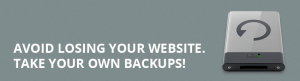How to Avoid the Catastrophic Event of Losing Your Website